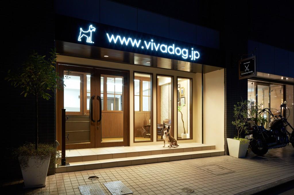 店舗  VIVA DOG 新装工事_9
